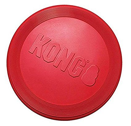 Dog Frisbee Chew-Proof