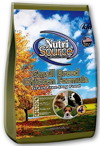 Top Recommended Dog Food for Maltipoo