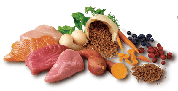 A selection of dog-friendly vegetables, pulses, grains and meat with good sources of protein