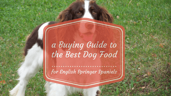English Springer Spaniels Pet Food
