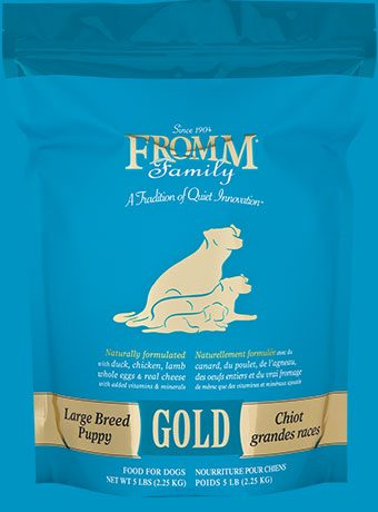 Best Puppy Food for English Setters
