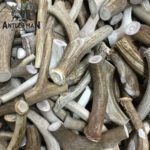 Natural Antler chews get a five star rating.