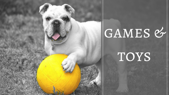 Pet related articles on dog toys and games