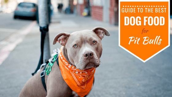 Dog Food For Pitbulls