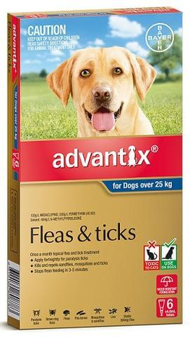 Advantix versus Seresto for flea control