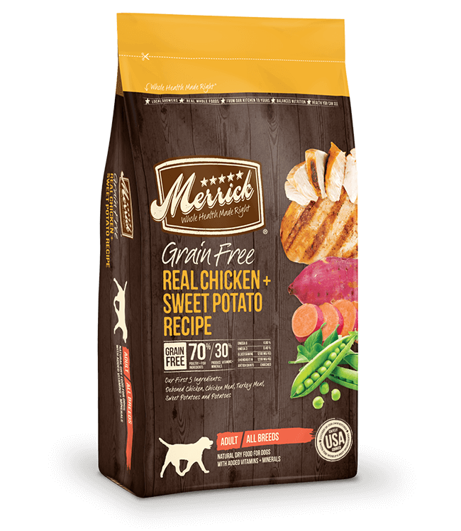 English Setter Best Dog Food