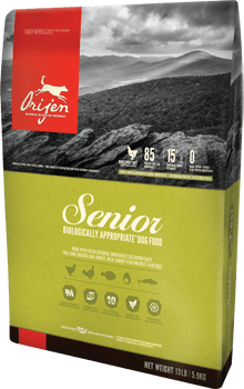 Best Dog Food for Senior English Setters