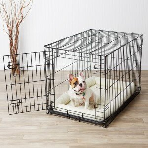 AmazonBasics Dog Crate Review