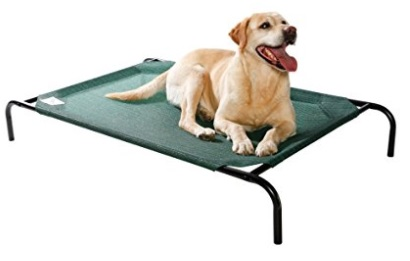 Coolaroo Elevated Dog Bed in Color Green