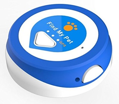 Small blue tracking device dog's collar.