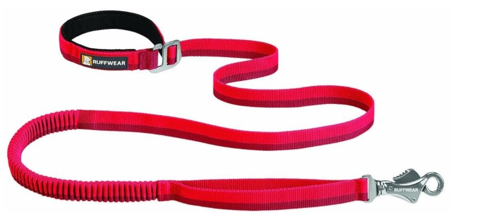 A red dog running dog leash
