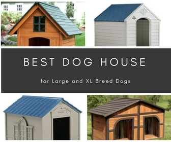 Best Large Dog House Reviews