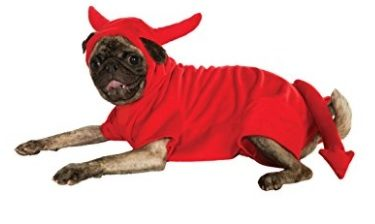 Devil Halloween Dog Costume