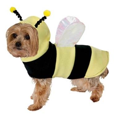 Dog Costume - Bumble Bee
