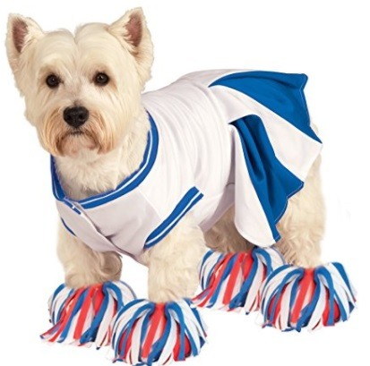 Best Halloween Dog Costume