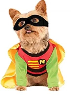 Best Adorable Dog Costume