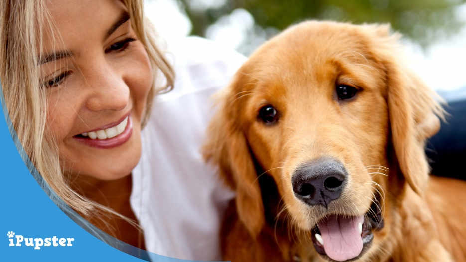 Boost Your Dog's Digestive Health with Probiotics
