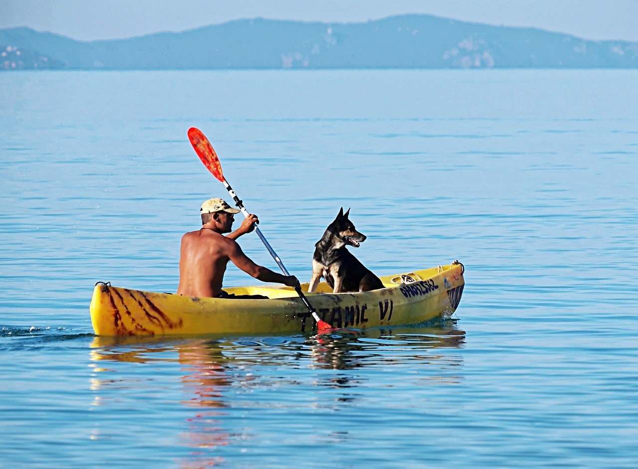 Kayaking with a dog on a lake in a canoe.