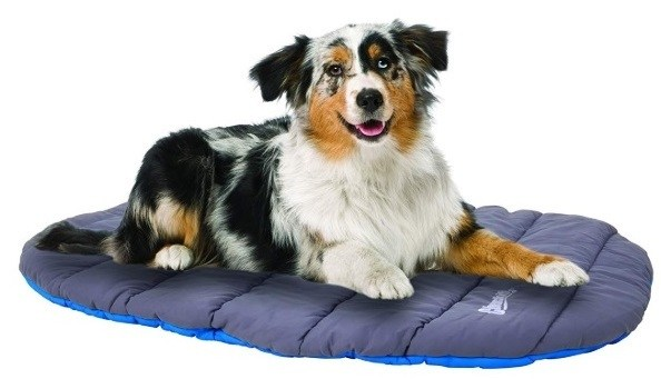 Australian Shepherd camping and resting on his tent camp comfy travel bed