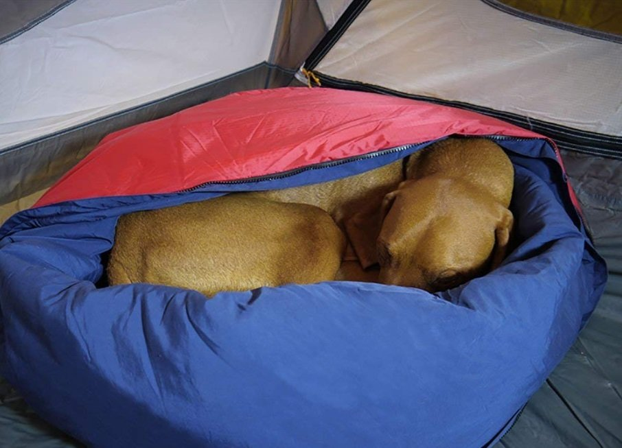 Dog camping bed perfect for Backpacking, Camping Trips, Hunting Trips,