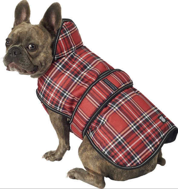 Winter Coat for Small Dogs