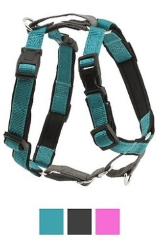 Reflective Dog Leash Harness