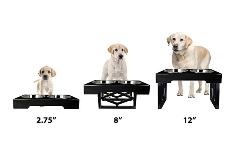 Adjustable Elevated Dog Bowls