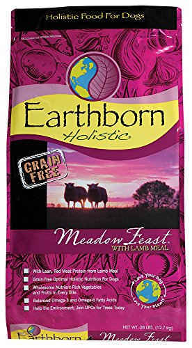 Earthborn Holistic Meadow Feast with Lamb Meal