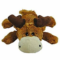 Squeaky Plush Dog Toy