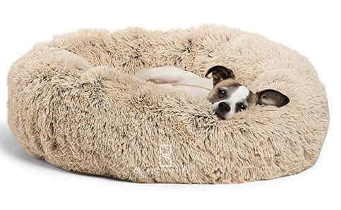 a tiny dog in the best furry donut dog bed