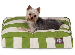 what is the best high loft dog bed for small breeds