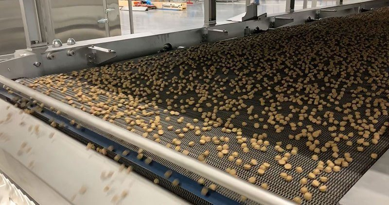 Kibble on a oven atop a conveyor belt