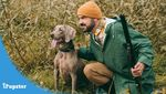 Man squatting in bushes bird hunting with a Weimaraner dog and a gun in his hand