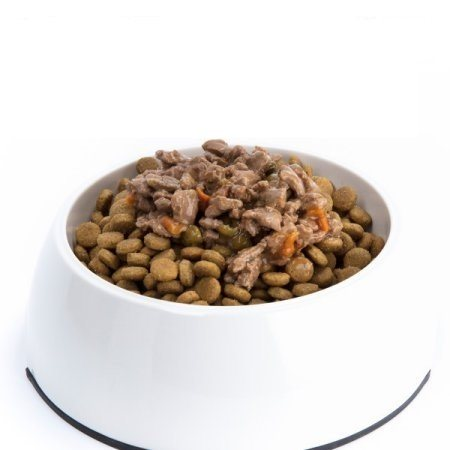 Bowl of dry kibble topped with wet food