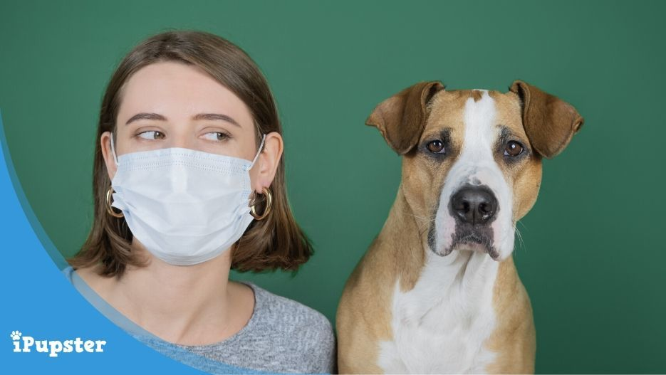 Woman wearing surgical mask sitting beside pet dog