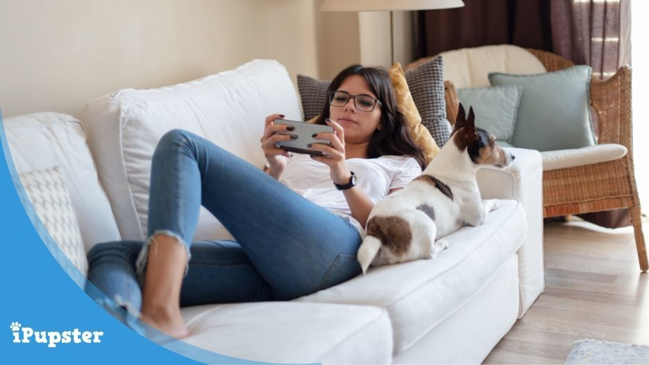 Young woman sitting on sofa with dog working on cell phone