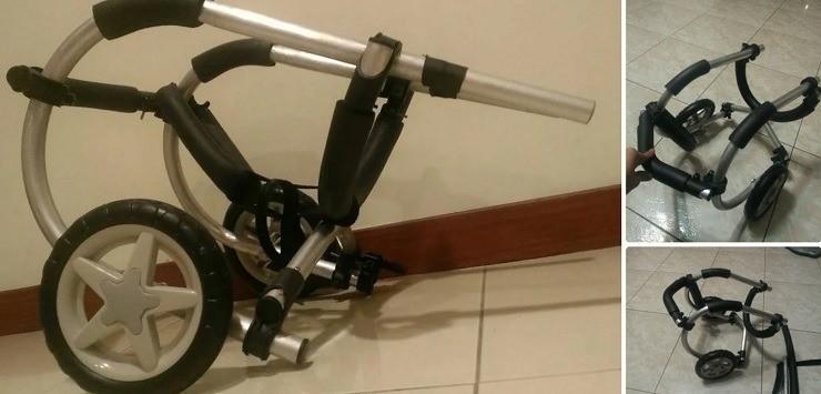 DIY Doggy rear legs wheelchair