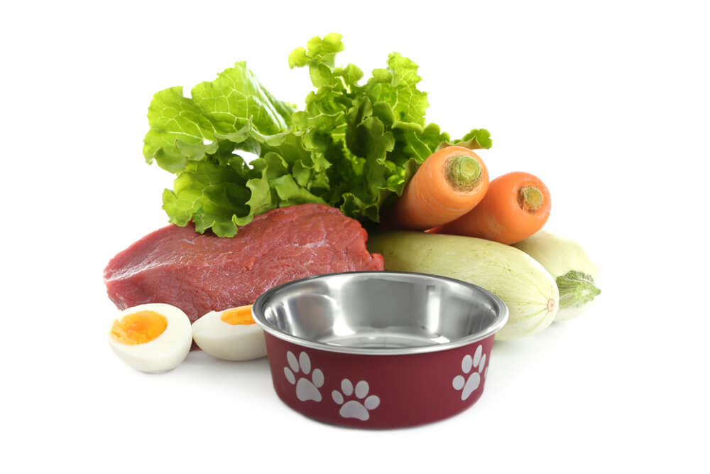 Low-phosphorus dog foods