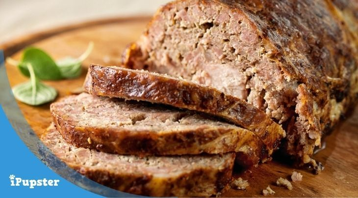 This guide discuss if meatloaf is OK for dogs to eat.