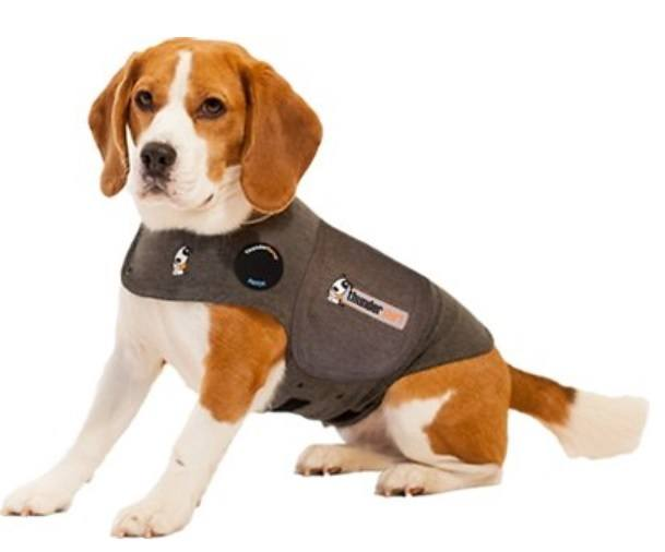 Thundershirt uses gentle hugging to calm your dog.