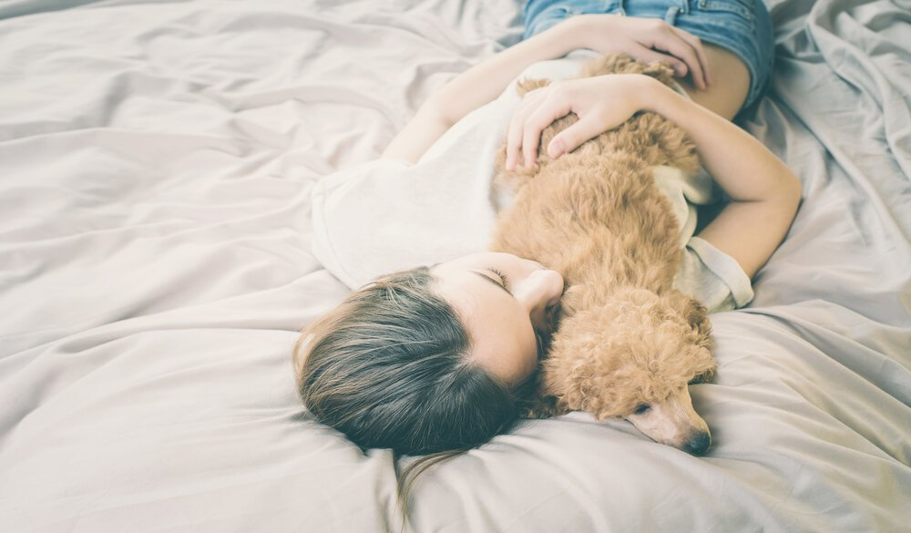 A girl with a poodle dog sleeping on the bed