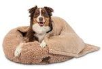A beautiful Australian Shepherd inside a Calming Dog Bed with Blanket