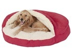 A golden retriever simply in love with this red colored cozy cave bed