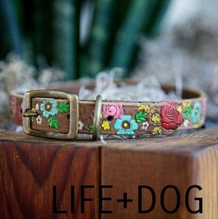 Cute DIY Flower Patterned Dog Collar