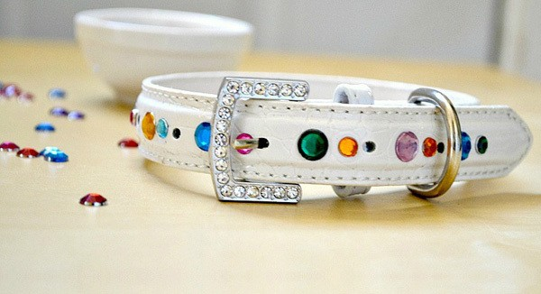 A white leather dog collar with colorful rhinestones and a bling buckle