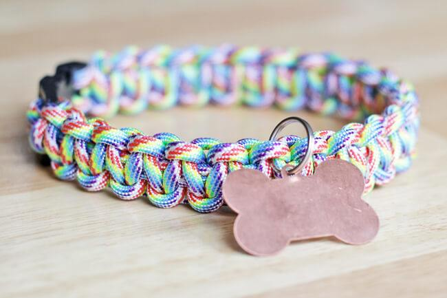 A cute and colorful diy paracord dog collar with id tags