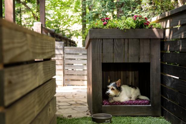 Chic Small Dog House Using Repurposed Wooden Pallets