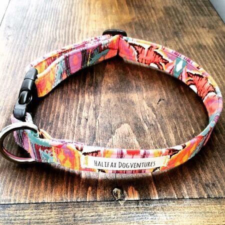 Personalized Dog Collar DIY